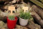 Plantenlabel in hout
